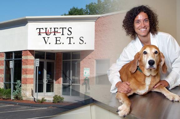 Hospital Tour | Tufts Veterinary Emergency Treatment