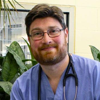 Dr. Andrew Goodman